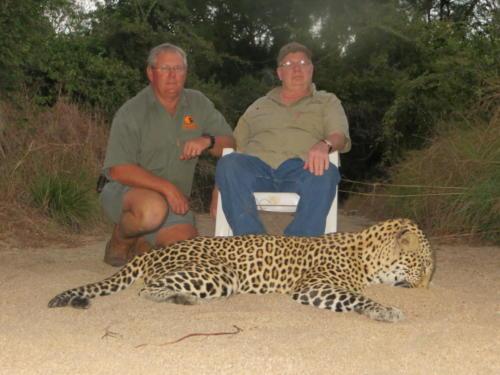 leopard 2440