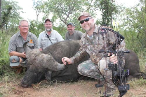 buffalo 8288