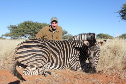 zebra 8727