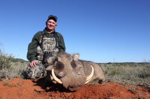 warthog 9721