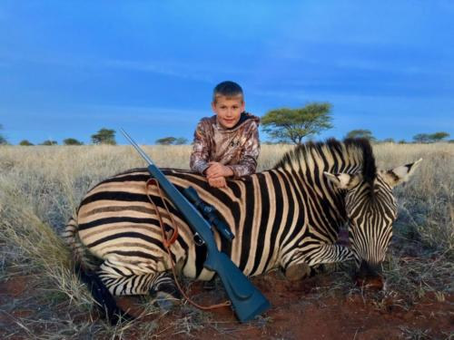 zebra 6034