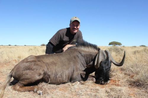 Allen Watson Black Wildebeest