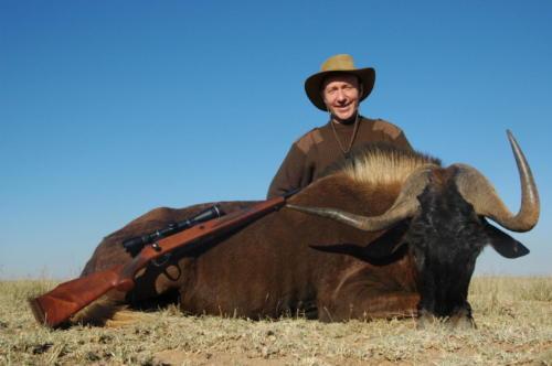 Jamie Cox Black Wildebeest (2)