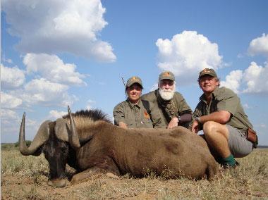donna-black-wildebeest